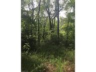 Lot T-44 Galax Drive T-44 Black Mountain NC, 28711