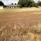 Lot 35 Valley Manor Portales NM, 88130