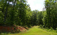 Lot19 Creekmont Crossing Lot 19 Mineral Bluff GA, 30559