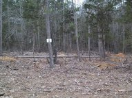 Lot 3 Memory Ln. Greers Ferry AR, 72067