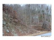 368 Poplar Gap Road Hot Springs NC, 28743