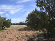 Lot 390 Chevelon Canyon Ranch 6024 Mesa View Dr Heber AZ, 85928
