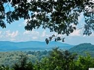 Lots 7-8 Country Mtn Rd Cosby TN, 37722