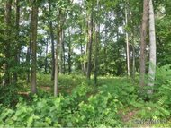 Lot 29 Jake Ridge Trail Fletcher NC, 28732