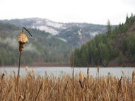 4571 Freeman Lake Rd Lot B Oldtown ID, 83822