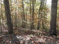 Lot #2 Jsd Farm Rd. Dillsboro NC, 28725
