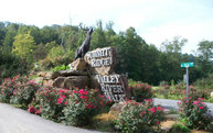 00 Peace River View Lot 1 Murphy NC, 28906