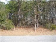 0 Penny Creek Road Walterboro SC, 29488