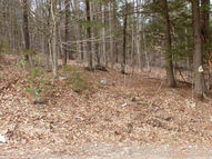 0 Spring Woods Lot 8 Diamond Point NY, 12824