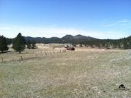 Tbd Pleasant Valley Road Custer SD, 57730