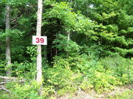 Lot 39 Pine Grove Estates Lerona WV, 25971
