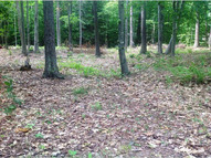 Lot 14 Pond Brook Road West Chesterfield NH, 03466