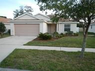 11841 Autumn Creek Drive Riverview FL, 33569