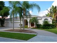 4394 Wheatland Way Palm Harbor FL, 34685