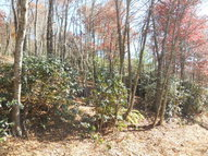 Tbd Ridge Run Road West Jefferson NC, 28694