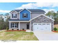 194 Old Blossom Court Raeford NC, 28376