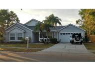 2092 Diane Avenue Palm Harbor FL, 34683