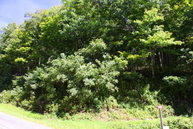 Lot 1 Holiday Lane (Lot 1) Whitetop VA, 24292