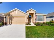8206 Round Leaf Lane Riverview FL, 33578
