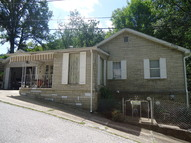 175 Grant Street Gauley Bridge WV, 25085