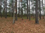 Lot 20 Marina Point Ln Falls Of Rough KY, 40119