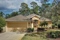 1219 Crown Pointe Lane Ormond Beach FL, 32174