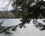 Lot 3 Off Little Smoky Dr Iron River MI, 49935