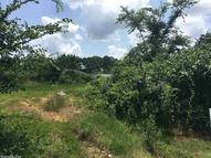 Lot 29 West Point Greenbrier AR, 72058