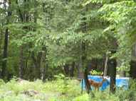65 Mill Creek Dr Mill Creek Road Adirondack NY, 12808