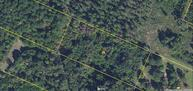 0000 Youngs Road Eutawville SC, 29048