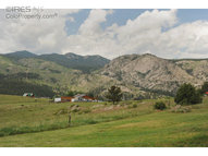 759 Palisade Mountain Dr Drake CO, 80515