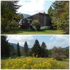 261 Gundelach Road Andes NY, 13731