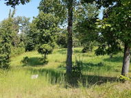 0 Overlook Ridge, Lot 21 Big Sandy TN, 38221
