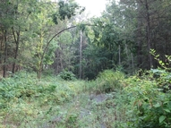 Lot 117 Two Mile Road Howard PA, 16841