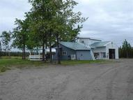 Mp 288.5 Parks Highway Nenana AK, 99760