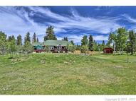 1758 County 5 Road Divide CO, 80814