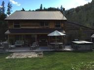 235 Dredge Camp Dr Stanley ID, 83278