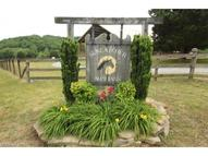 1588 Mcentire Road Tryon NC, 28782