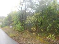 Lot 1 Blue Springs Road Mohawk TN, 37810