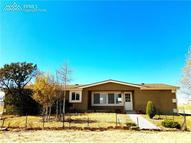4555 Windmill Flats Court Peyton CO, 80831