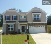 305 Massey Circle Chapin SC, 29036