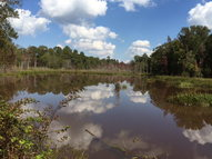 87acres Bethesda Road Tennille GA, 31089