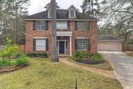 263 South Crimson Clover Ct The Woodlands TX, 77381
