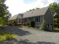 230 Maple Ridge Dr Lords Valley PA, 18428
