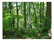 Lot 62 Clear Springs Trail 62 Nebo NC, 28761