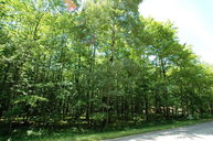 Lot 22d Red Cherry Rd Baileys Harbor WI, 54202