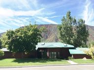 110 Vista Drive Glenwood Springs CO, 81601