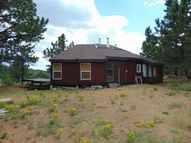 435 Pipeweed Path Westcliffe CO, 81252