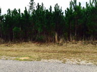 0 East Pointe Dr Lot 6 Picayune MS, 39466