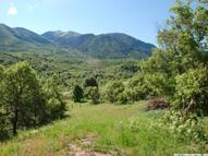 13162 S Canyon Rd Payson UT, 84651